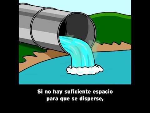 Como evitar la contaminacion del agua yahoo dating