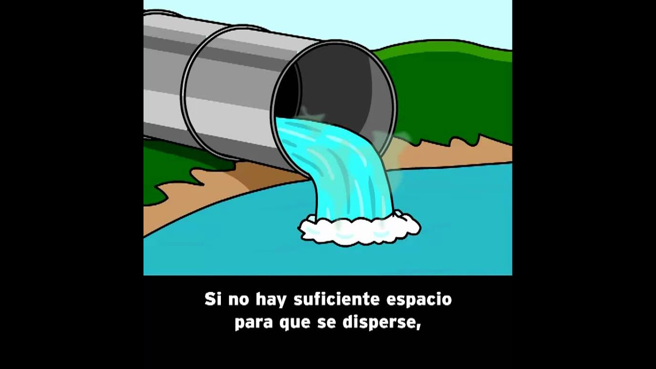 Contaminacin del Agua  BrainPOP Espaol  YouTube