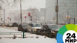 Метель и гололедица: в Москву на несколько дней вернулась зима - МИР 24