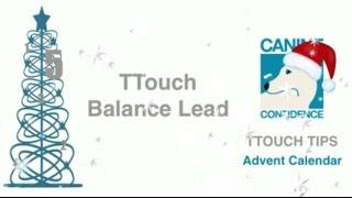Ttouch Balance Lead. Ttouch Tips Advent Calendar Day 5