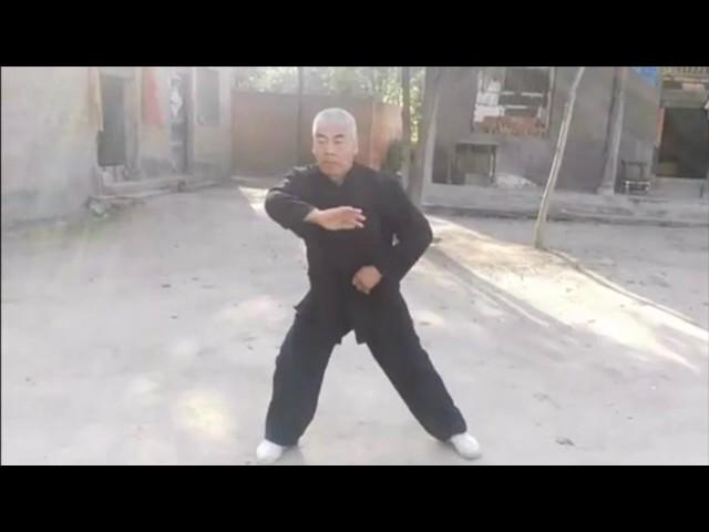 Wang Chang Jiang - Tai Chi style Chen Laojia Chenjiagou [陈氏太极拳老架 Taijiquan style Chen]