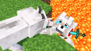 - Top 5 Minecraft Life Minecraft Animation
