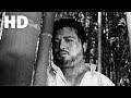 산불(1967) / Burning Mountain ( Sanbul )