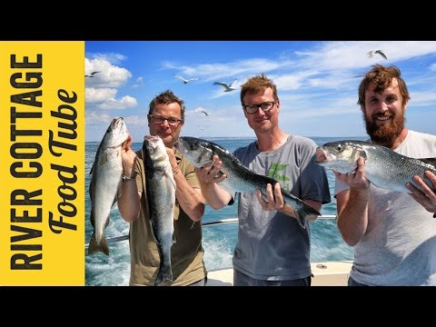 Pollock Ceviche | Hugh Fearnley-Whittingstall