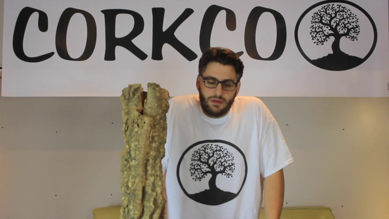 Corkco Tv Episode 1 What Is Cork Spray