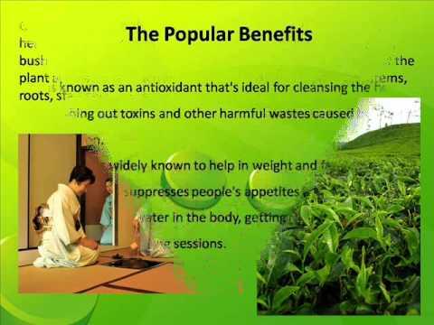 Pure Organic Green Tea - Green Tea Wiki