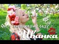 ИванкА Ой у вишневому саду видеоклип mp3