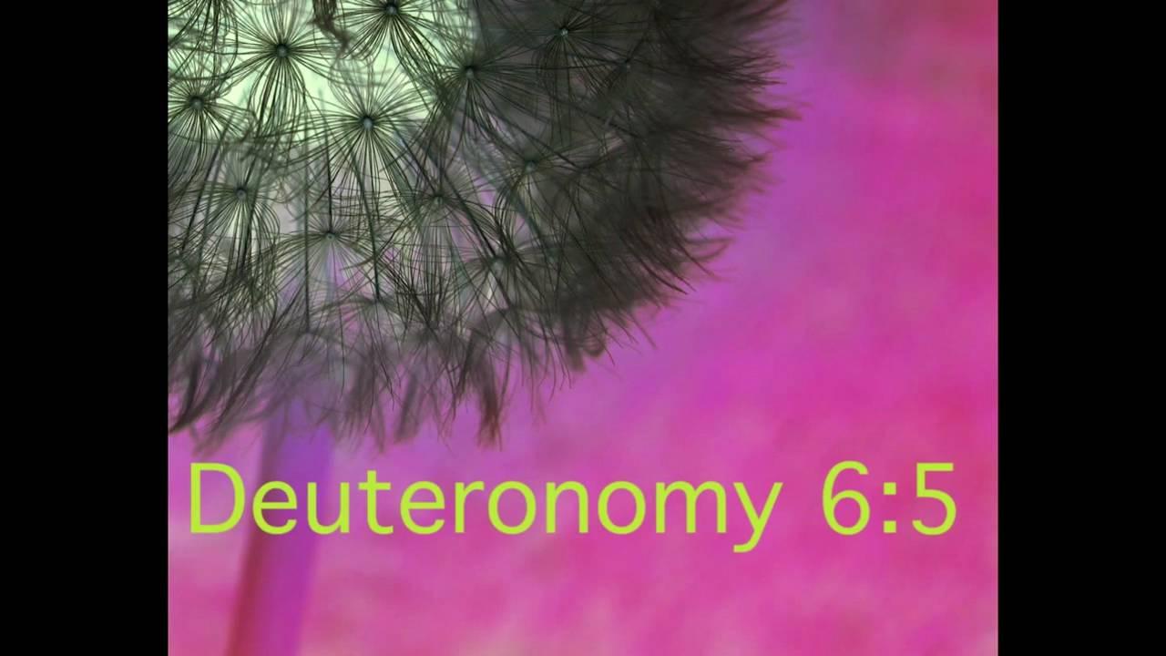 ebook Persona Oeconomica: Personalität als Ansatz
