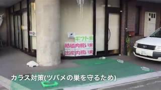 出産内祝い・結婚内祝い・ギフトのお米屋 間瀬木商店 ネット通販ショッ...