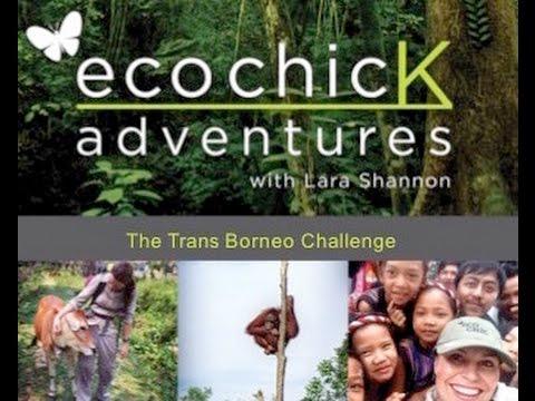 The Trans Borneo Challenge