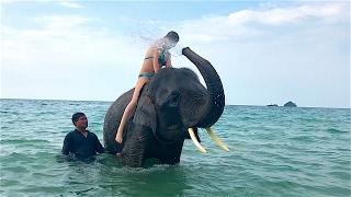 Таиланд. Остров Ко Чанг (Koh Chang)(Говорят, все просто: зарабатывай деньги, люби одну женщину, путешествуй. От нас добавим - осознанно убирай..., 2017-02-13T08:01:18.000Z)