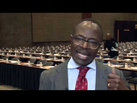 Godfrey Gomwe, CEO of Thermal Coal, Anglo American - Mining Lekgotla 2013