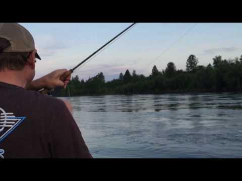 Spokane River Dry Fly Fishing Clip
