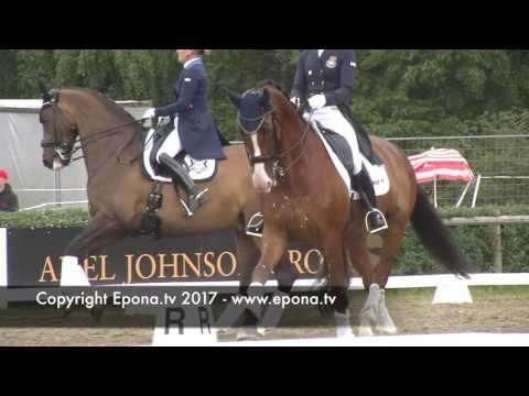 Falsterbo Horse Show warm up arena - Friday July 14 2017