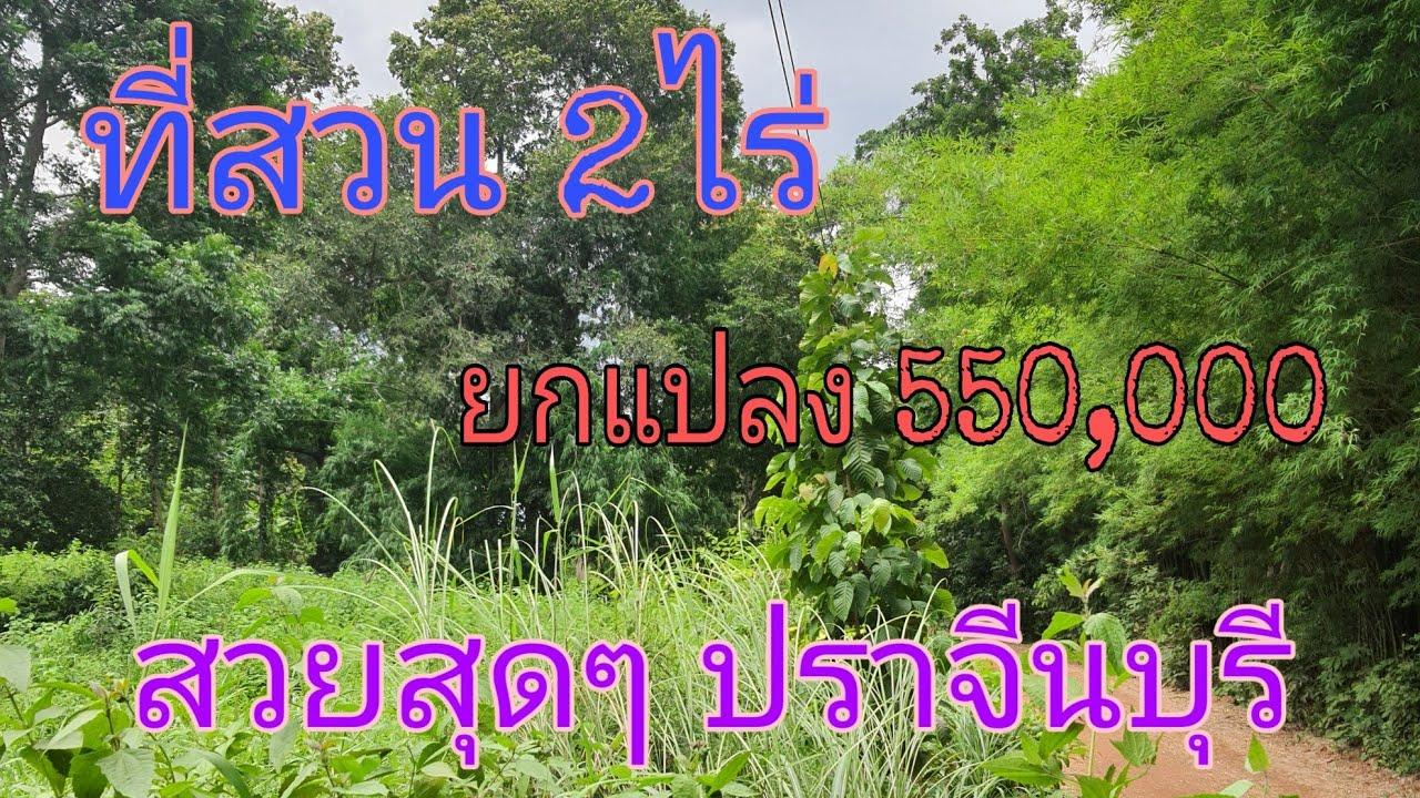 #ปิดการขายครับ#ที่สวน2ไร่ ปราจีนบุรี ยกแปลง 550,000 โฉนดครุฑแดงพร้อมโอน
