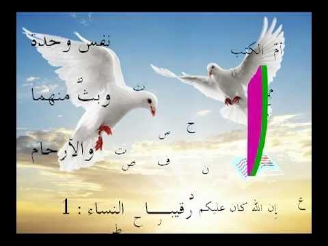 أم آيات القرآن هي الأولي من النساء. د نبيل أكبر