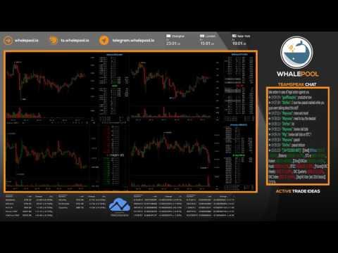 Whalepool: Crypto Price Action