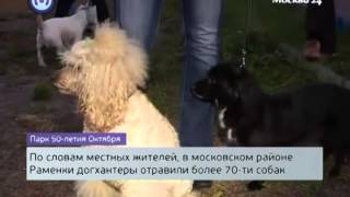 Ветеринарная клиника Лебеди (район Раменки Москвы) спасает животных от догхантеров(, 2014-04-22T11:40:01.000Z)