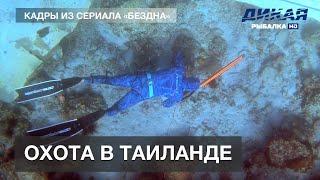Подводная охота и фридайвинг в Таиланде Кадры из сериала Бездна с Олегом Гаврилиным