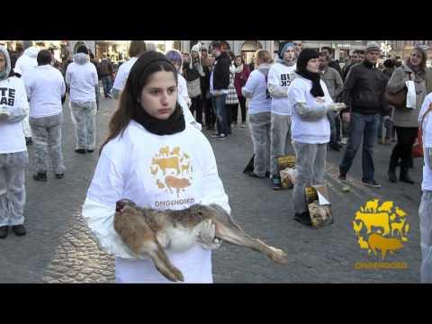 Actie tegen vlees 10 december 2011