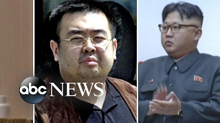 Half-brother of Kim Jong Un killed in poison spray attack
