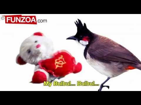 Google Google My Bulbul Whatsapp Status Video Funzoa| Funny Google Song | Funzoa Funny Videos
