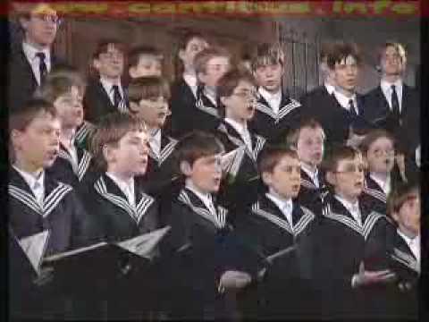 Thomaner Chor Leipzig Maria Durch ein Dornwald ging
