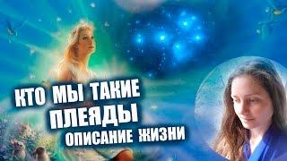 Плеяды ✨ Кто Мы - Описание Жизни ✨ Галактическая Федерация Света 💖✨