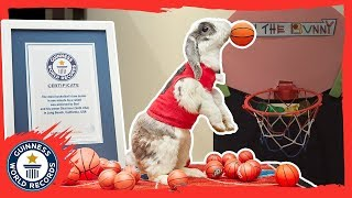 Bini the slam dunking basketball bunny - Meet the Record Breakers