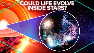 Could Life Evolve Inside Stars?