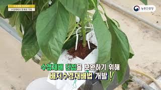 수경재배성장일기-식물은 어떻게 물만 먹고 사나 - 4.…