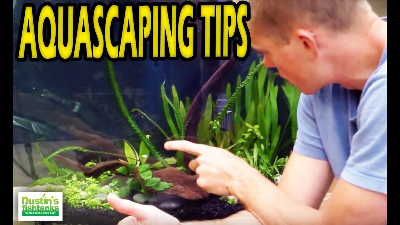How To Aquascape A Planted Aquarium Aquascaping Tips And Adjustments 4 Of 4 Youtube