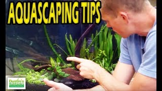 How to Aquascape a Planted Aquarium: Aquascaping Tips and adjustments,  4 of 4