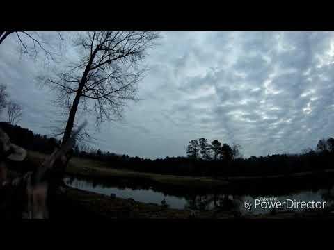 Waterfowl Hunt In Powhatan, Va 12-30-2018