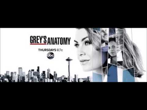 Grey's Anatomy 14x23 Cold as Ice (Soundtrack- We Come Together REGINA PRICE)