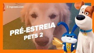 Pets 2 - A Vida Secreta dos Bichos | Pré-Estreia | Ingresso.com