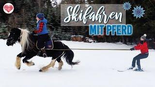 SKI- UND SCHLITTENFAHREN mit Pferd | Skijöring | VLOG 4 | Pilsali