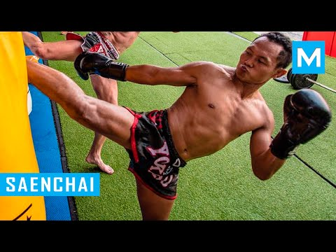 Saenchai Muay Thai Training 2016 | Muscle Madness