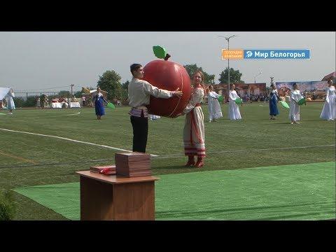 День Корочанского района
