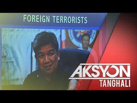 Mga dayuhang terorista sa Mindanao, dumarami - ARMM Gov. Hataman