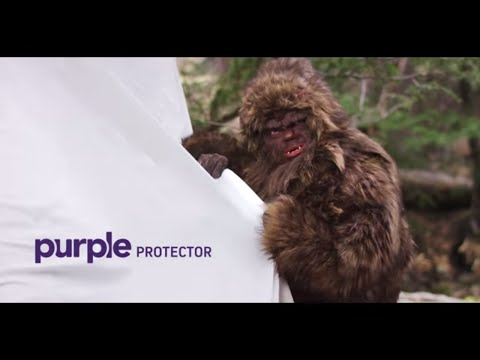 Can Your Mattress Protector Stand up to Sasquatch?