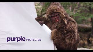 Can Your Mattress Protector Stand up to Sasquatch? thumbnail
