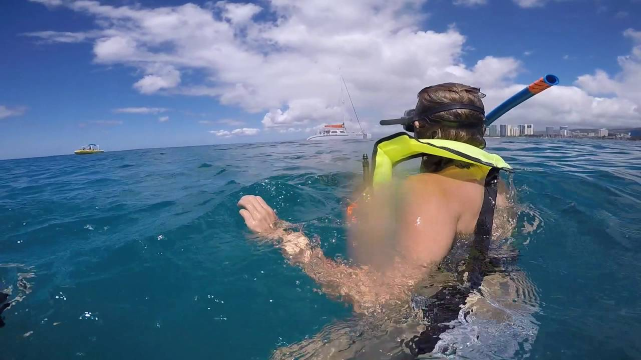 Snorkeling At Turtle Canyon Waikiki Hawaii