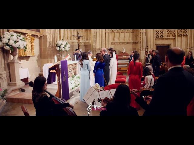 🎻 Cantata 147 | Capilla de los Velez | Catedral de Murcia | Musica para Bodas | Musical Mastia