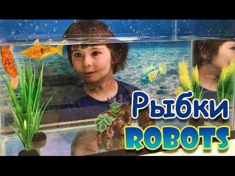 У нас в аквариуме плавают электронные рыбки!