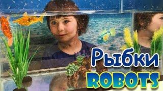 У нас в аквариуме плавают электронные рыбки!(Идём в ногу со временем! Мы увидели в магазине электронных рыбок и решили их испытать. Взяли рыбку, акулу..., 2016-02-09T02:25:55.000Z)