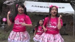 2016.4.10 真木桜祭り. 2016.4.10 FUJI SAKURA塾 歴史公園. 2016.4.10 ...