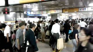 Tokyo Central Station: orderly chaos