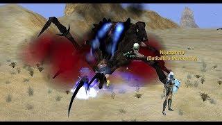 EVERQUEST RAID PROGRESSION - Zomm the Seventh Born + Fiddleback rematch!