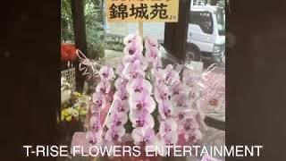花屋まこと 開店御祝いの花 T-RISE FLOWERS ENTERTAINMENT